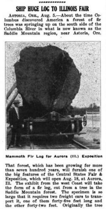American Lumberman, Part 2, 1922 pg 50